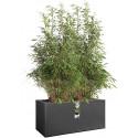 elho Vivo Structure Finish Long Flower Pot - Black