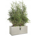 elho Vivo Structure Finish Long Flower Pot - Grey