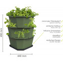 Paul Potato Starter Potato Tower - Dark Green - 3 Tier