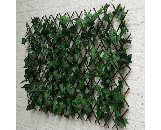 Wonderwal Trellis - English Ivy 1m x 1m
