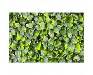 GSD Wonderwal Trellis - Orange tree leaf 1m x 2m