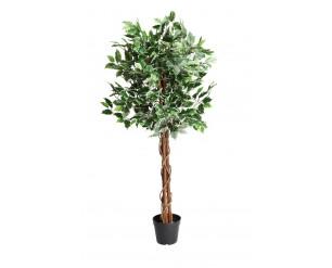 GSD Artificial Trees - 180cm Ficus tree