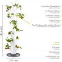Sissi Strawberry Planter Classic - White