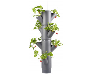 GSD Sissi Strawberry Planter Hanging - Grey