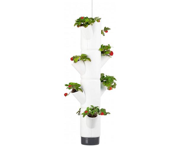 Sissi Strawberry Planter Hanging - White