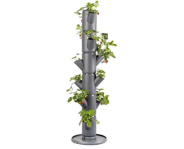 Sissi Strawberry Planter Classic - Grey