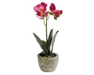 EdenBloom Pink Artificial Potted Orchid 26cm Tall Realistic Everlasting Home Decor