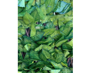 0.6m x 1.8m Birch Leaf - Medium